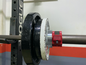 weight plates, barbell training, rogue fitness, calibrated plates, strength training